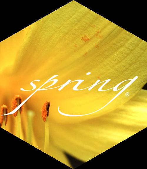 hex-spring
